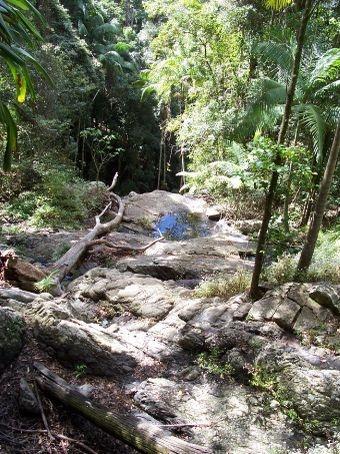 Mt Glorious, Queensland