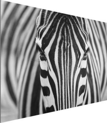 Alu Dibond Bild - Zebra Look - Quer 2:3 50x75-22.00-PP-ADB-WH Jetzt bestellen unter: https://moebel.ladendirekt.de/dekoration/bilder-und-rahmen/bilder/?uid=804b27fd-47ad-52a8-ae93-031330b39b40&utm_source=pinterest&utm_medium=pin&utm_campaign=boards #heim #bilder #rahmen #dekoration