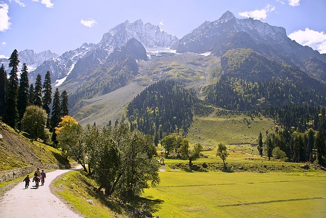 Way to Glacier, Sonmarg -- Kashmir, India