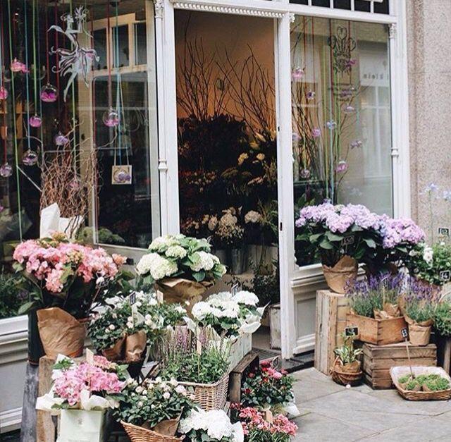 britthogan12 ♥︎ ☼ Flower shop interiors, Flower shop