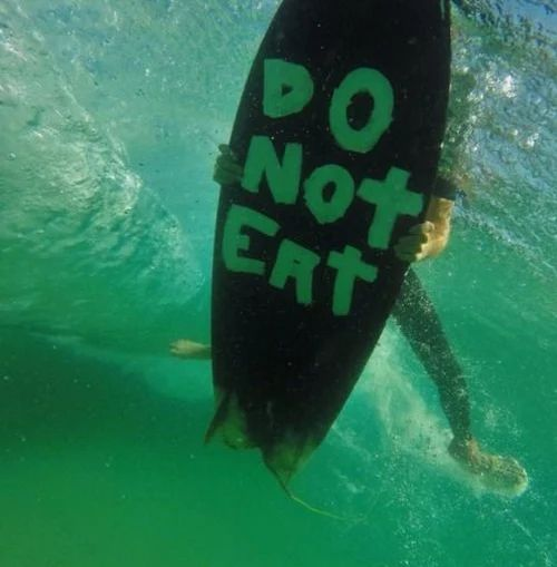 To all literate Sharks, Please, Do Not Eat. Thank you! ~ Surfer Dude