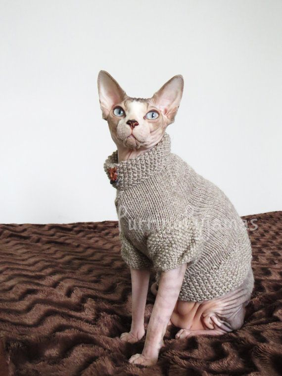 Cat clothes  warm cat sweater knitted cat by PurringPyjamas