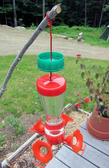 diy ant moat for hummingbird feeder this is a plastic cap with a hole in - Homemade Hummingbird Food