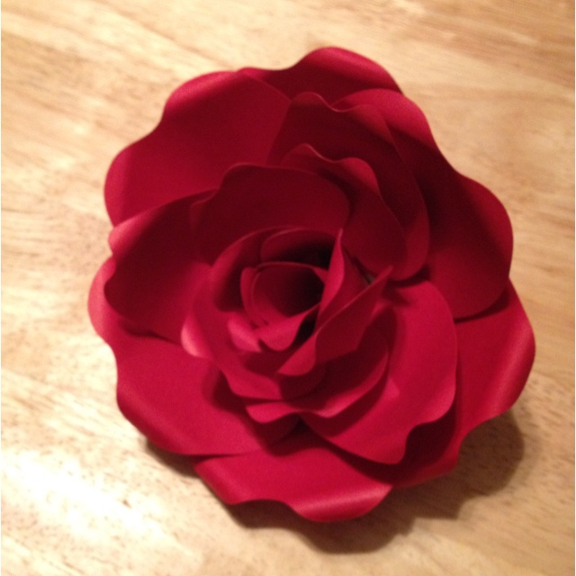My first attempt to create a flower using my Cricut Giant Flowers cartridge.
