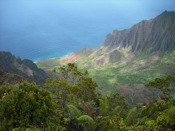Http www balihousehawaii com big island of hawaii pinterest