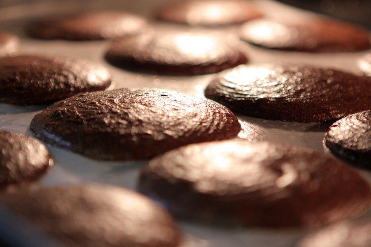 Batí las yemas con el azúcar y agregá el chocolate fundido con la manteca y la esencia de vainilla.Incorporá las claras de huevo batidas con una pizca de sal.Colocá la mousse en una manga de pastelería y hacé porciones de mousse sobre una placa con papel manteca.Horneá a 95°C durante cinco horas.
