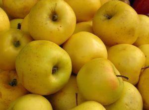 Kiszona czerwona kapusta z jabłkami, przepis Magdaleny Dąbrowskiej z Białopola