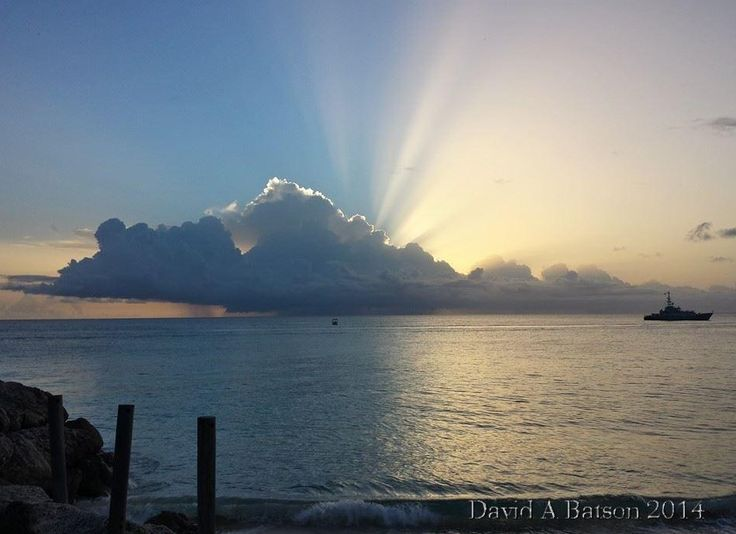 50 Best Beautiful Barbados Images On Pinterest: 17 Best Images About Beautiful Barbados On Pinterest