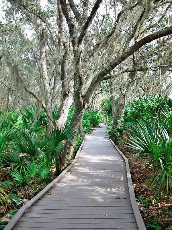 Merritt Island National Wildlife Refuge - Florida