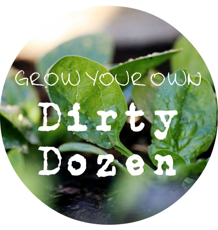 are peppers fruits dirty dozen fruits