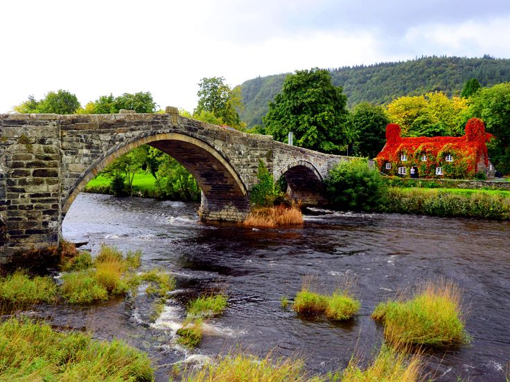 Llanrwst Tea Room, Conwy Valley, Snowdonia, North Wales - Photograph from the Guardian Eyewitness series