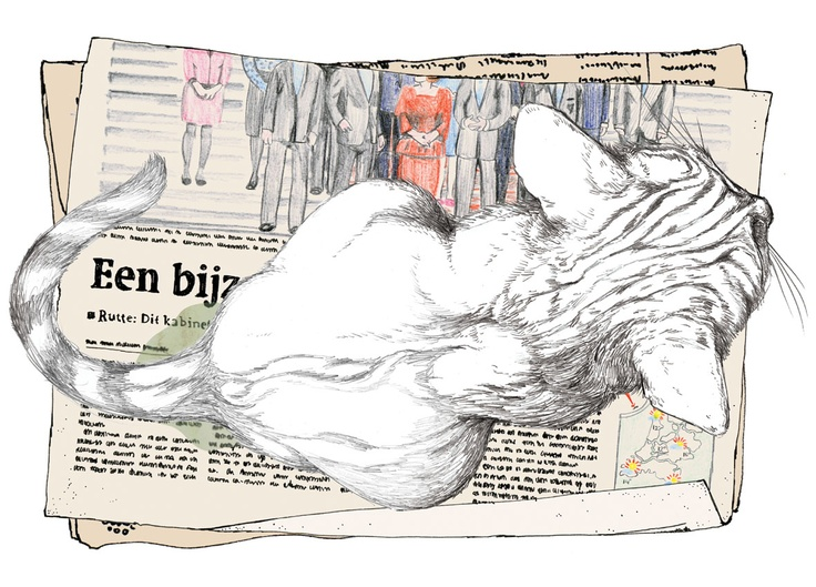 What happens to newspapers when they die (for the BNS comic newspaper about news & satire).