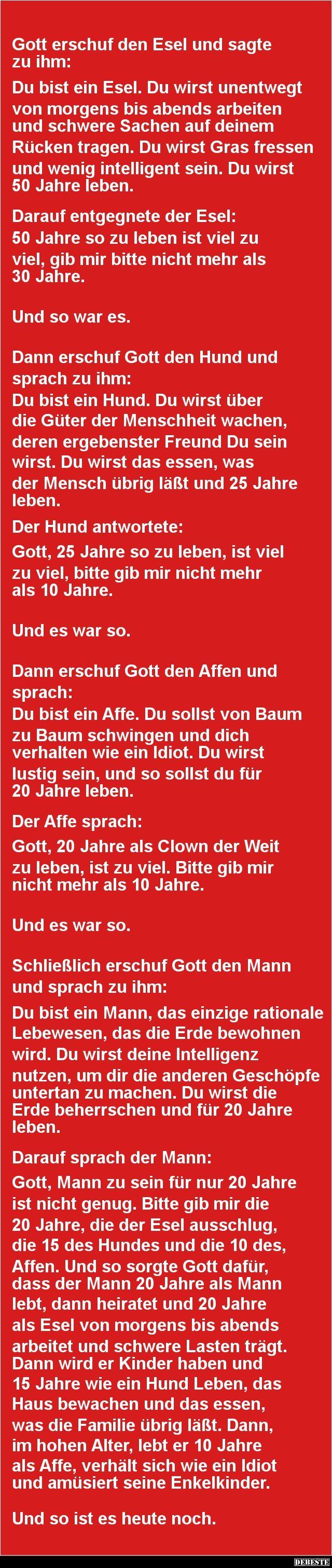 Die Entstehung des Mannes | DEBESTE.de, Lustige Bilder, Sprüche, Witze und Videos