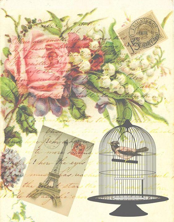 Vintage, Wiktoriański, Ptak, Klatka Dla Ptaków, Kwiaty