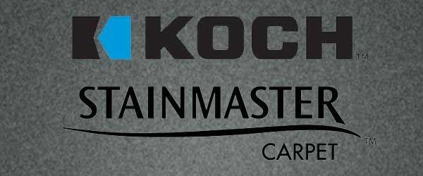 Koch to clean carpet