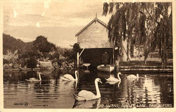 Jubilee Lake looking stunning with swans in the lake and an original boathouse that is no longer there. Jubilee Lake is several kilometres from the main street of Daylesford Australia.