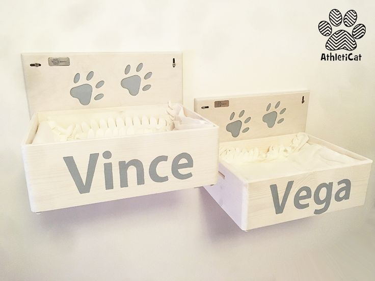 Handmade wooden cat box for Vince and Vega