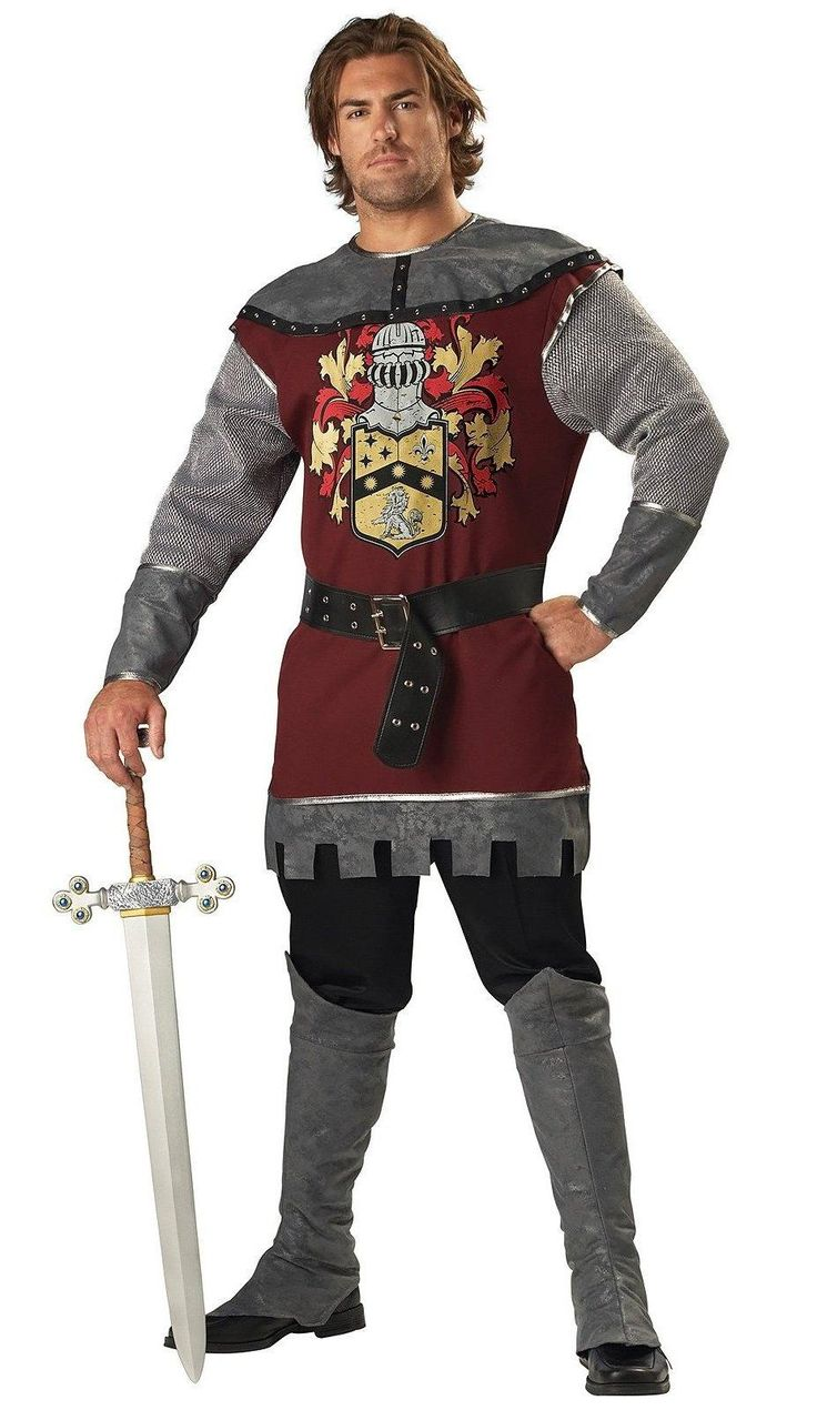 Noble Knight Adult Costume from Buycostumes.com