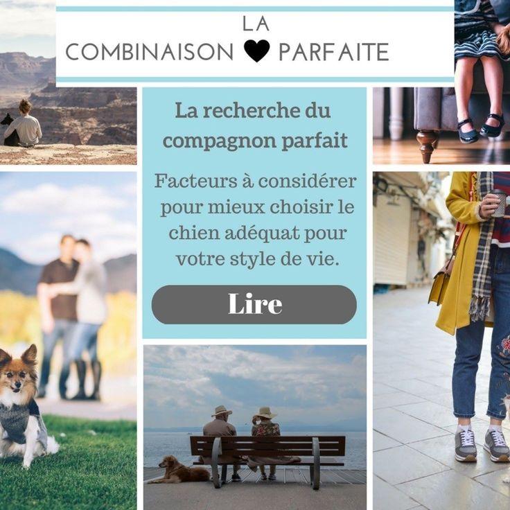 Explorez notre revue par catégorie: La combinaison parfaite <3 Facteurs à considérer pour mieux choisir le chien adéquat pour votre style de vie. Lire davantage http://ift.tt/2rMOIBx