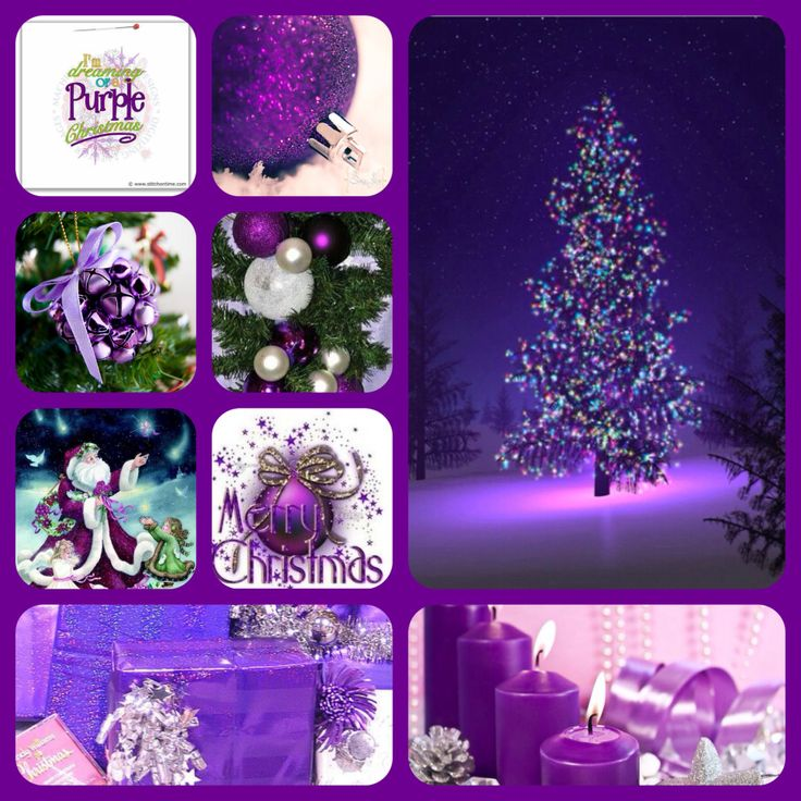 17 Best Images About Merry Thriftmas On Pinterest: 17 Best Images About Purple Christmas On Pinterest