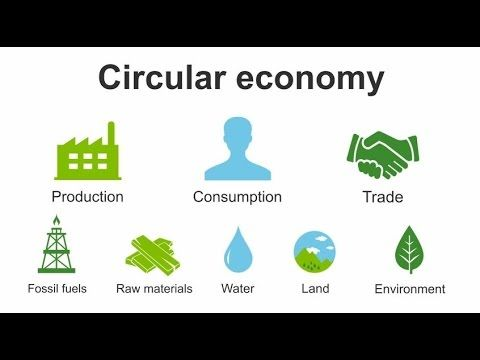 ▶ How to become a Green SME in a Circular Economy - YouTube