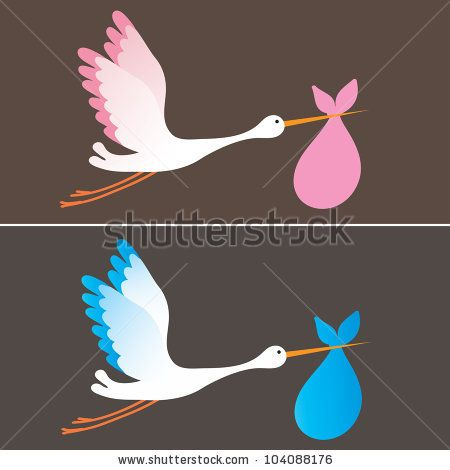A cartoon illustration of a stork delivering a newborn baby girl and boy by Nikitina Olga, via Shutterstock