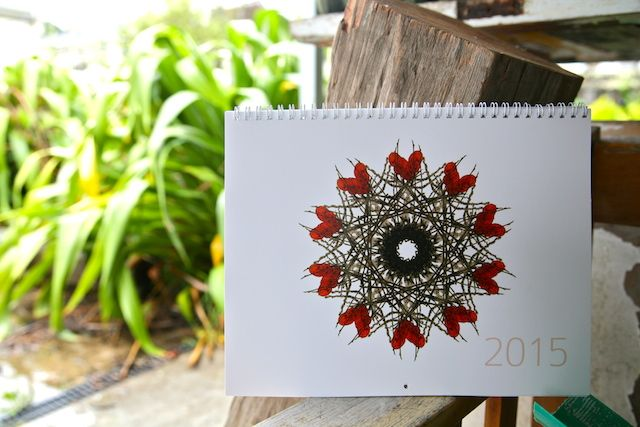 2015 Mandala calendar by Jo Tito Artist.
