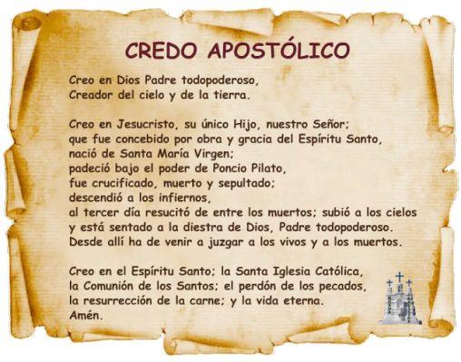 El Credo Catolico Related Keywords