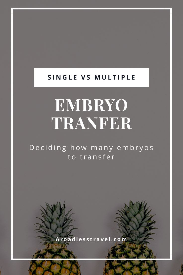 Single Embryo Transfer vs Multiple Embryo Transfer: Deciding how many embryos to transfer - A Roadless Travel
