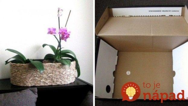 Z kartónu od topánok: Vyrobte si elegantný obal na orchideu!