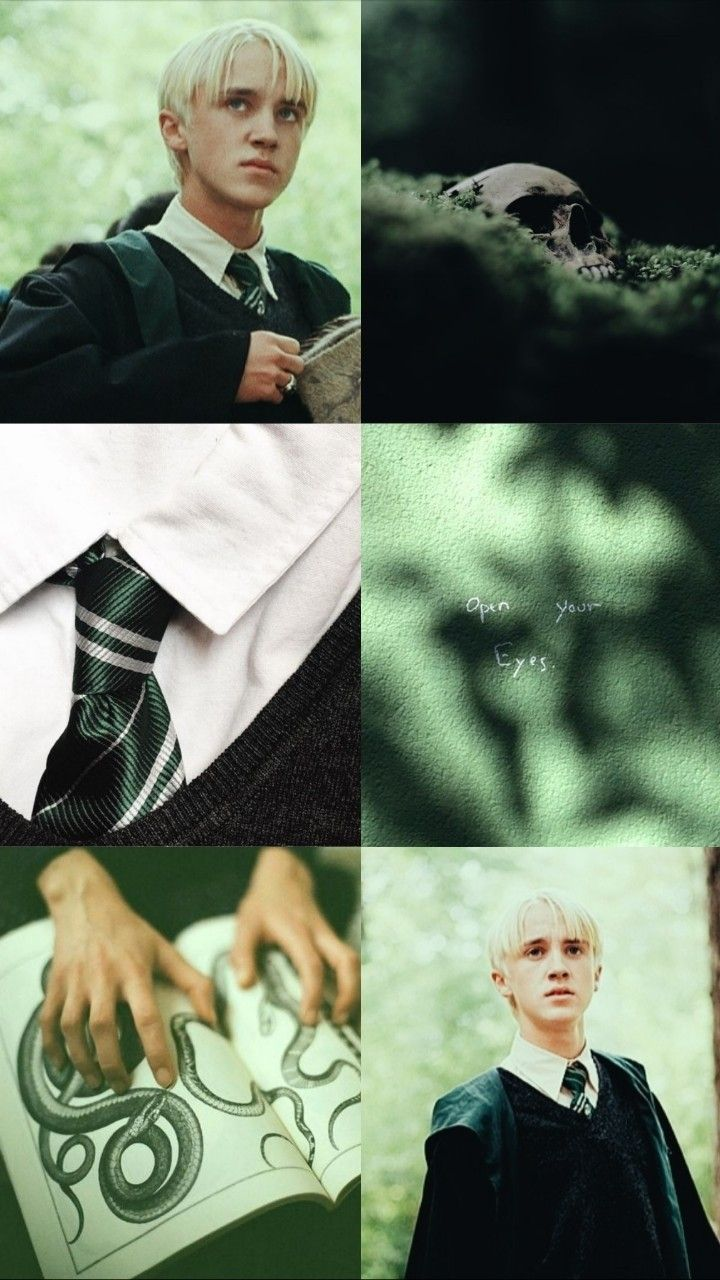 slytherin prince 🐍👑