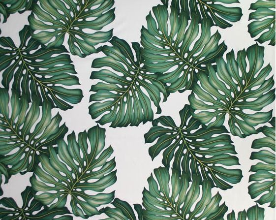 Ohana Cream Tropical Hawaiian Monstera Leaves on a cotton upholstery twill fabric.   See more fabrics at: BarkclothHawaii.com