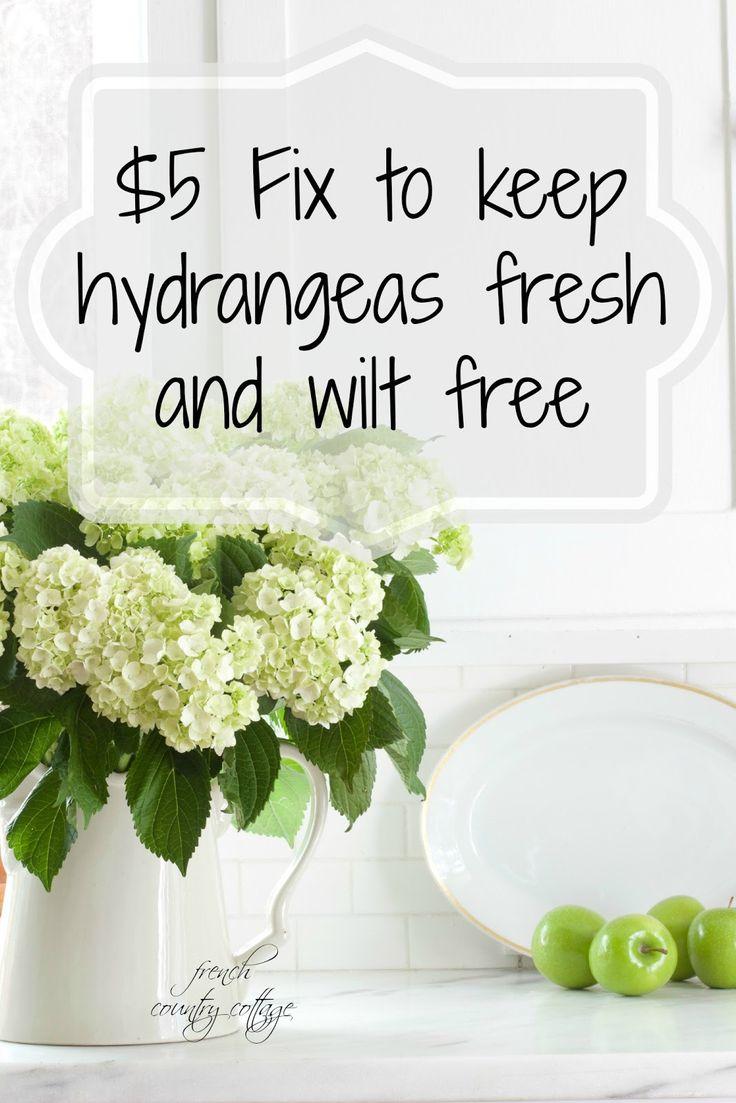 FRENCH COUNTRY COTTAGE: Flower Power~  alum keeps hydrangeas fresh