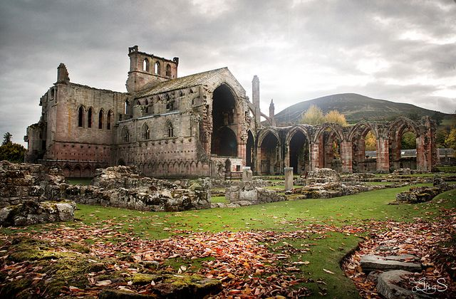 melrose abbey. this was so beautiful!! and how cool is it that this is where Robert the Bruce's heart is burried