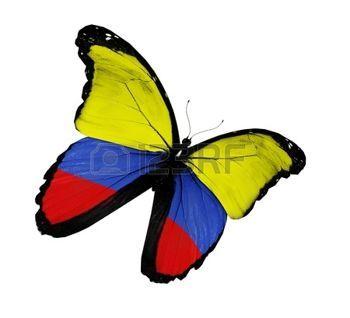 Bandera colombiana mariposa volando, aislado sobre fondo blanco photo