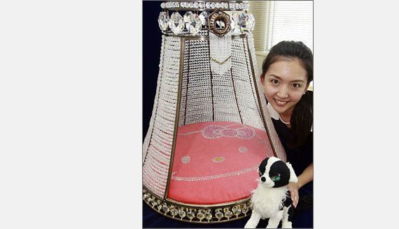 14 ridiculously expensive pet products chihuahuas for Extravagant dog beds