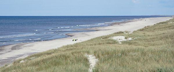 Jutland-Sondervig. Mooiste strand van Denemarken mét gratis wifi. In de zomer zandsculpturen kunst.