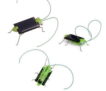 Güneş Enerjili Robot Böcek