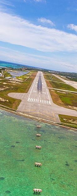 Sangster Airport at Montego Bay Island in Jamaica /// #travel #wanderlust