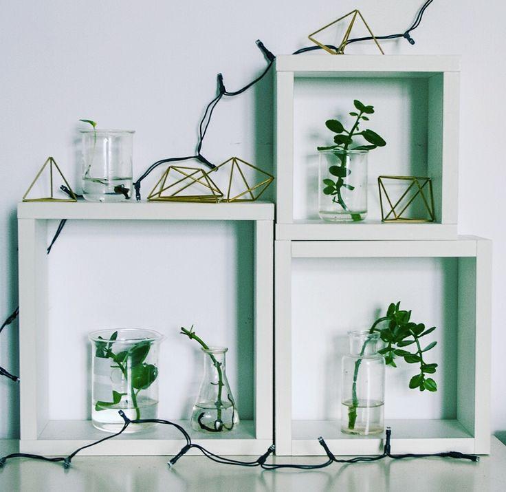 #home #homedecor #interiors #interiordecoration #decorations #homedecor #myhome