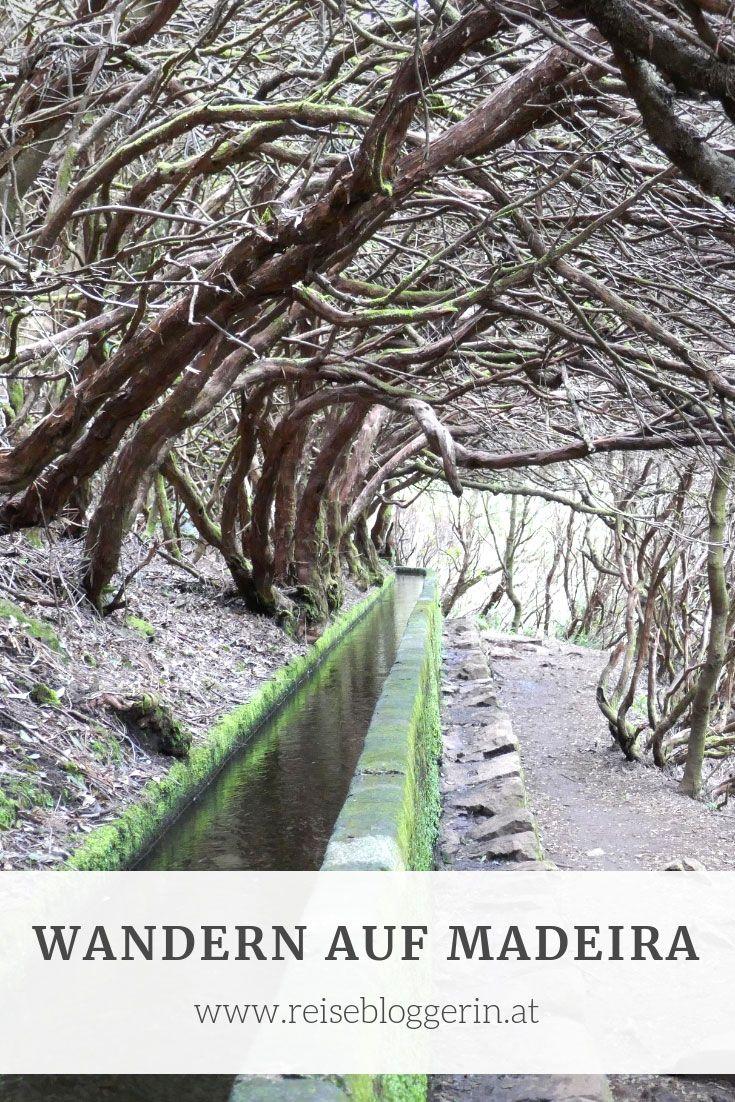Wandern Auf Madeira Meine Drei Schonsten Wanderungen Reisen Und