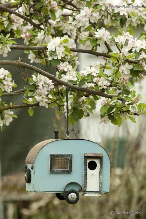 caravane pour oiseaux de passage