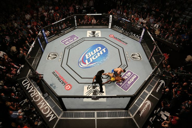 Find out how you can go to UFC 168! #UFC #UFCOctagon #UFC168 #Octagon #UltimateFightingChampionship #Fighting #LasVegas #Vegas #travel #bucketlist #tickets #ticketpackages http://quintevents.com/sports-travel/combat-sport/ufc-168
