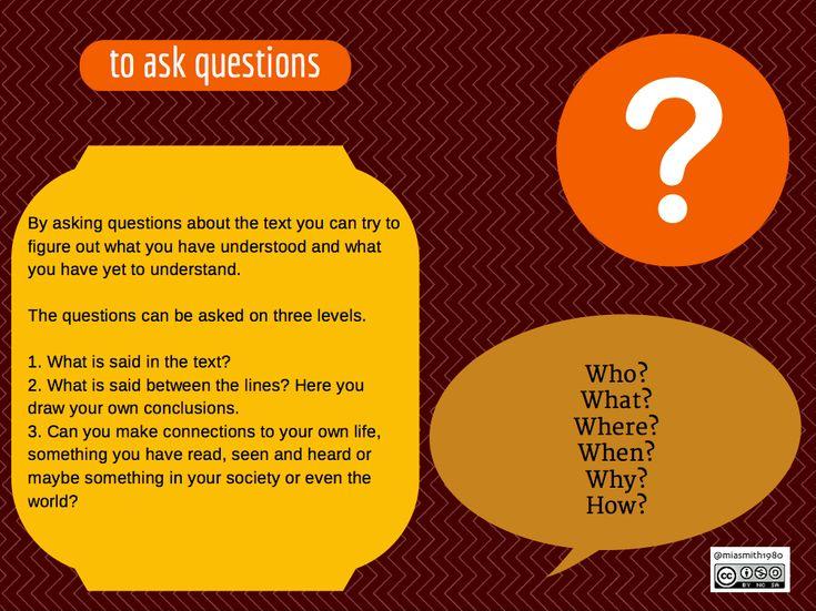 questions bild ny