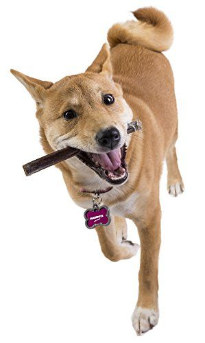 Chompeez Bully Sticks for Dogs Healthy All Natural Free Range Gluten Free Rawhide Alternative Dog Treats 6 All Natural Bully Stick 25 Count >>> See this great product.-It is an affiliate link to Amazon.