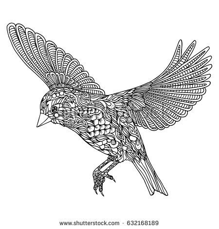 Bird coloring page. Greenfinch vector illustration