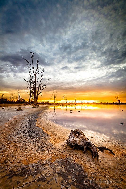 ~~Kings Billabong ~ Mildura, Australia by hangingpixels~~