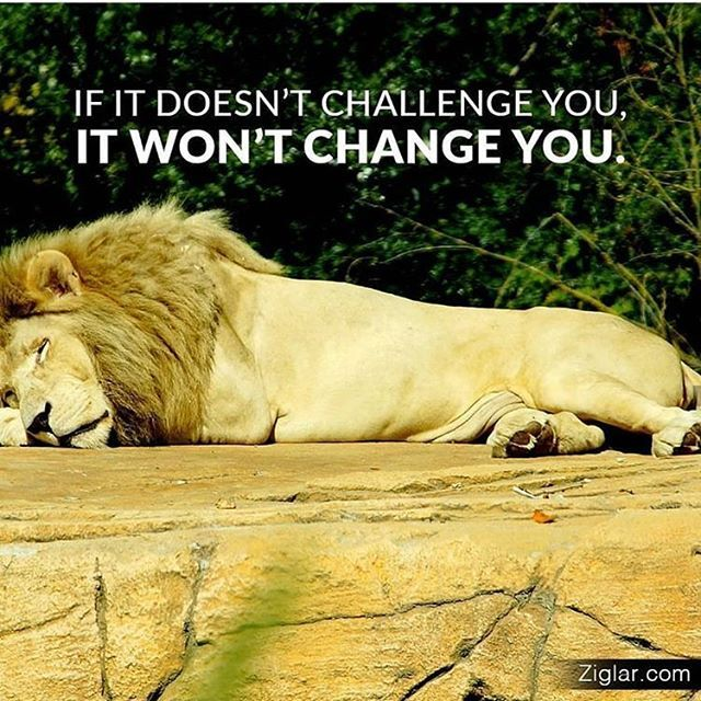 Change is hard getting out of your comfort zone is hard pushing yourself to be better is hard...in the end it is all worth it! . . #neverquit #nevergiveup #mindset #commitment #succeed #decide #motivation #successinlife #challengeyourself #comfortzone