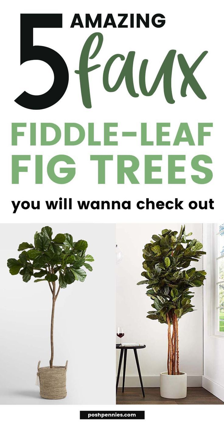 5 Faux Fiddle-Leaf Fig Trees That Will Save You A Fortune