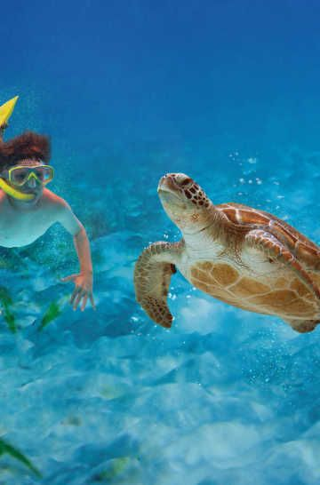 Kid and Family-Friendly Things to Do in Fort Lauderdale, Florida